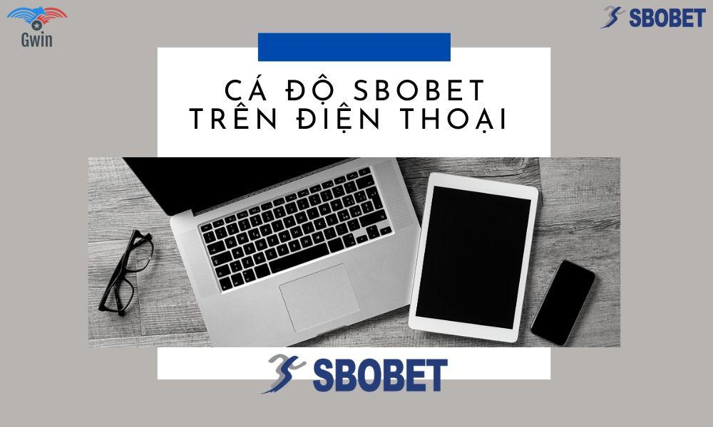 Lưu ý khi tải app Sbobet